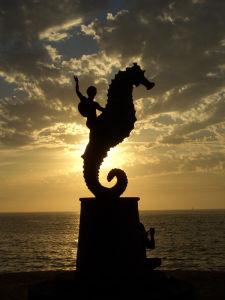 Caballito de mar en Puerto Vallarta
